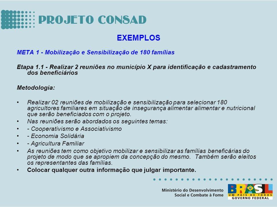 META 1 - Mobilização e Sensibilização de 180 famílias Etapa 1.1 - Realizar 2 reuniões no município X para identificação e cadastramento dos beneficiár