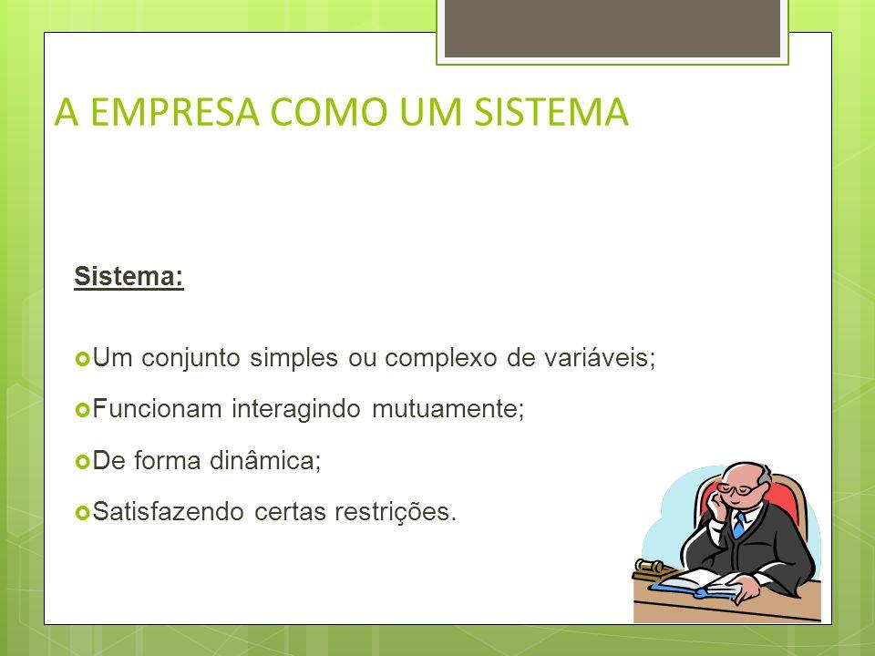 A EMPRESA COMO UM SISTEMA Sistema: Um conjunto de elementos inter-relacionados que atuam e interatuam, ou seja, interagem entre si e com outros sistem