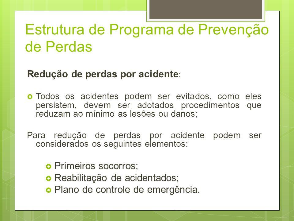 Estrutura de Programa de Prevenção de Perdas Controle das causas dos acidentes: Projetos, arranjo físicos e proteção pessoal; Prevenção de Incêndio; M