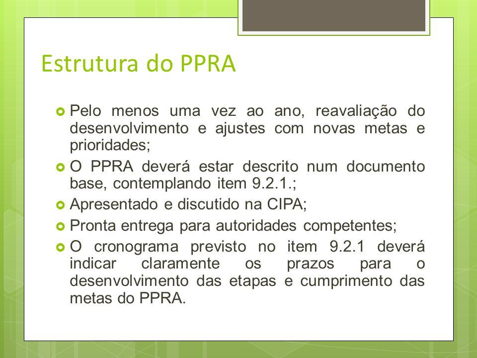 Estrutura do PPRA 9.2.1.O Programa de Prevenção de Riscos Ambientais deverá conter, no mínimo, a seguinte estrutura: Planejamento anual com estabeleci