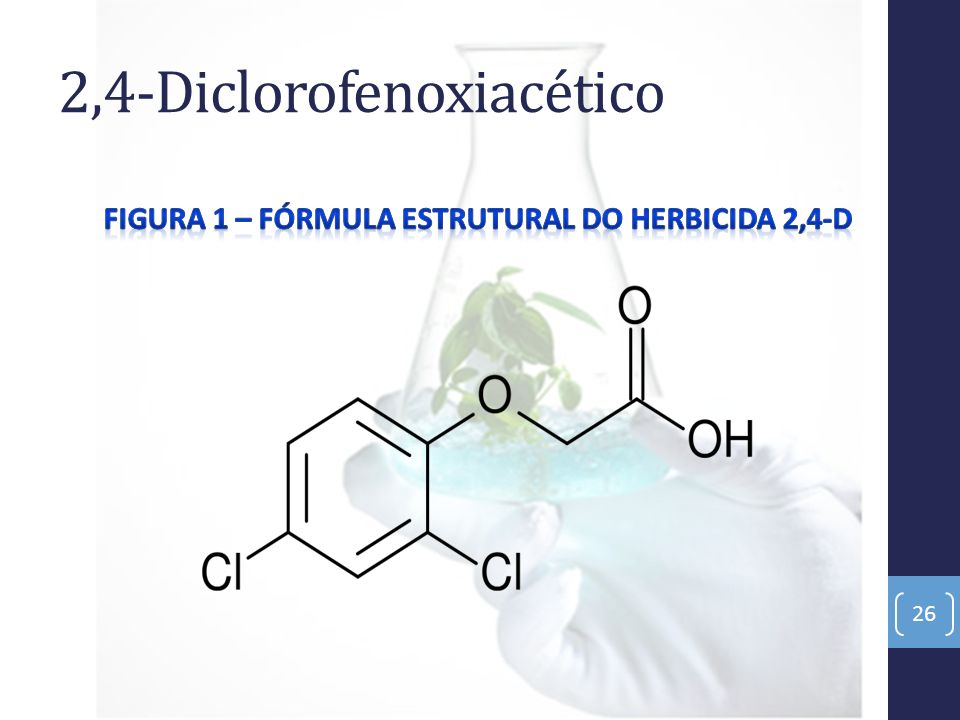 2,4-Diclorofenoxiacético 26