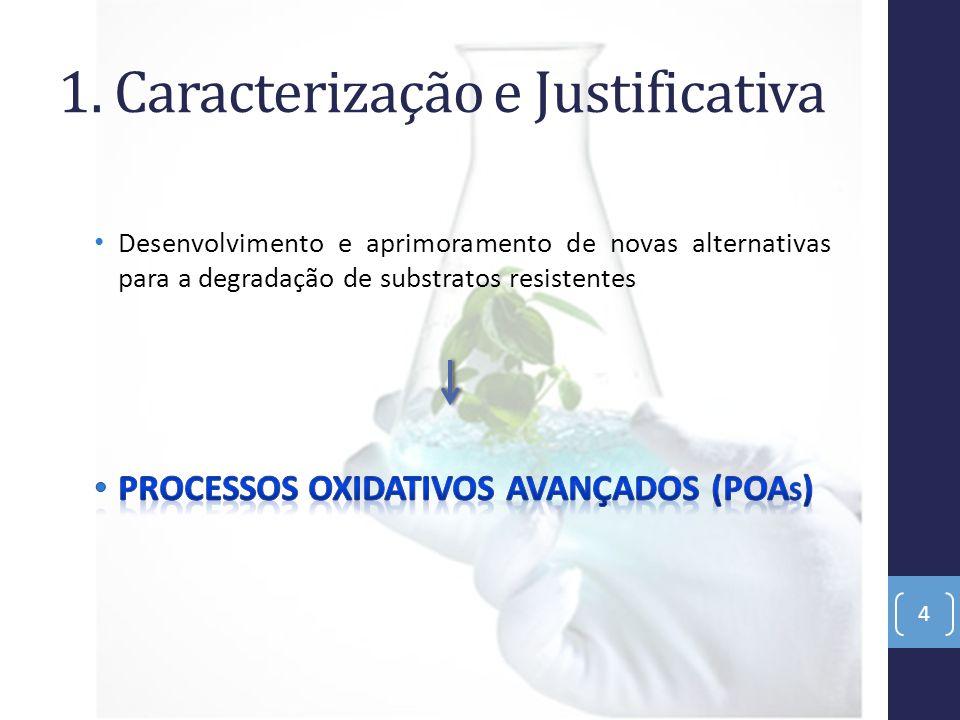 1. Caracterização e Justificativa 4