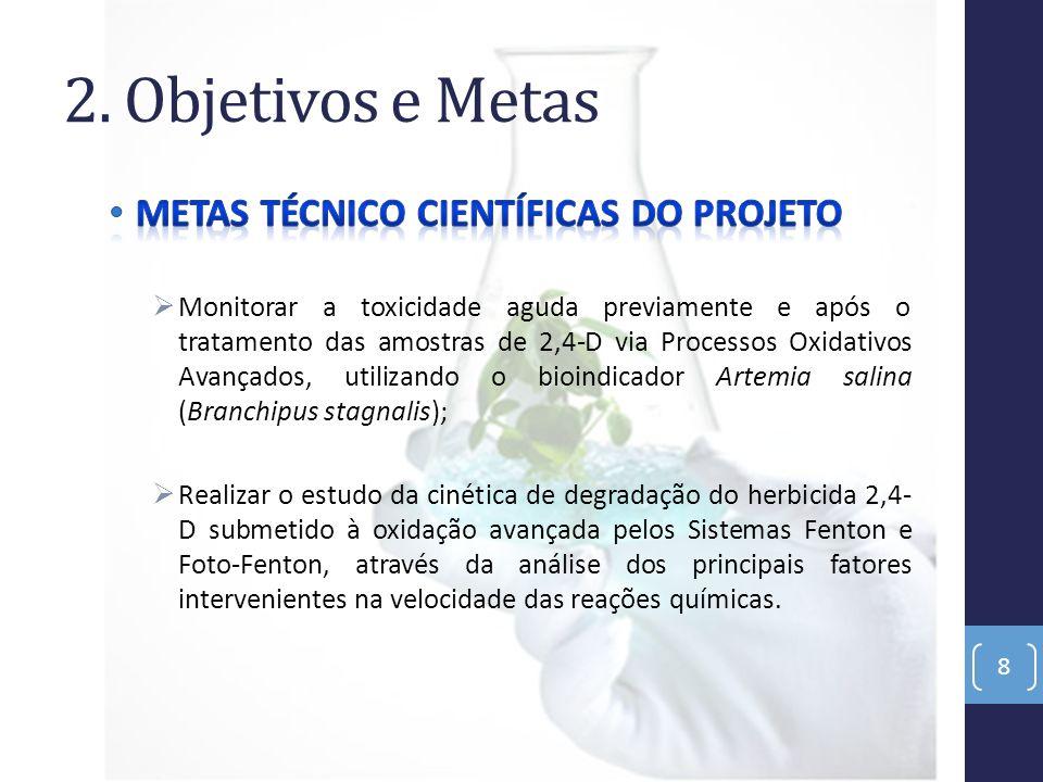 3. Metodologia e Estratégia de Ação 9