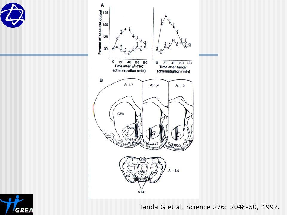 Tanda G et al. Science 276: 2048-50, 1997.