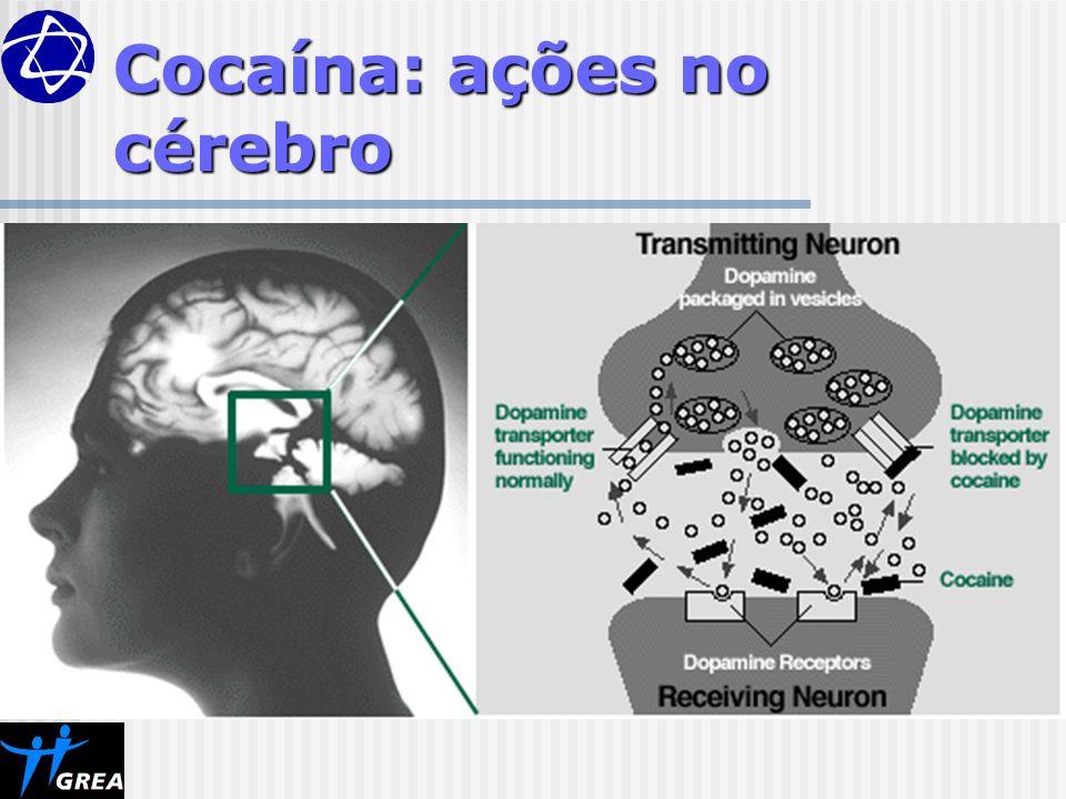 Cocaína: ações no cérebro