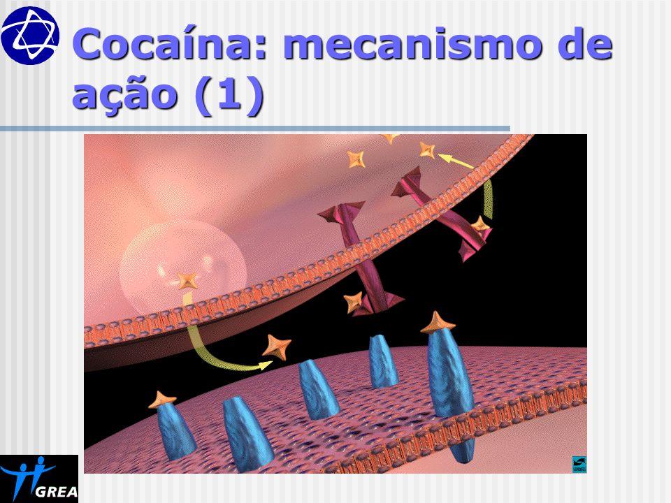 Cocaína: mecanismo de ação (1)