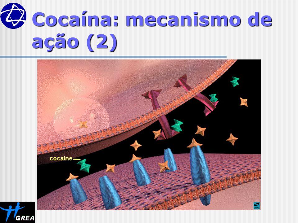 Cocaína: mecanismo de ação (2)