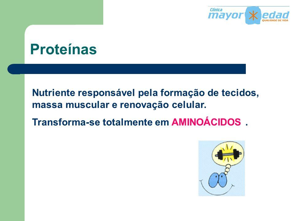 Proteínas Nutriente responsável pela formação de tecidos, massa muscular e renovação celular. Transforma-se totalmente em AMINOÁCIDOS.
