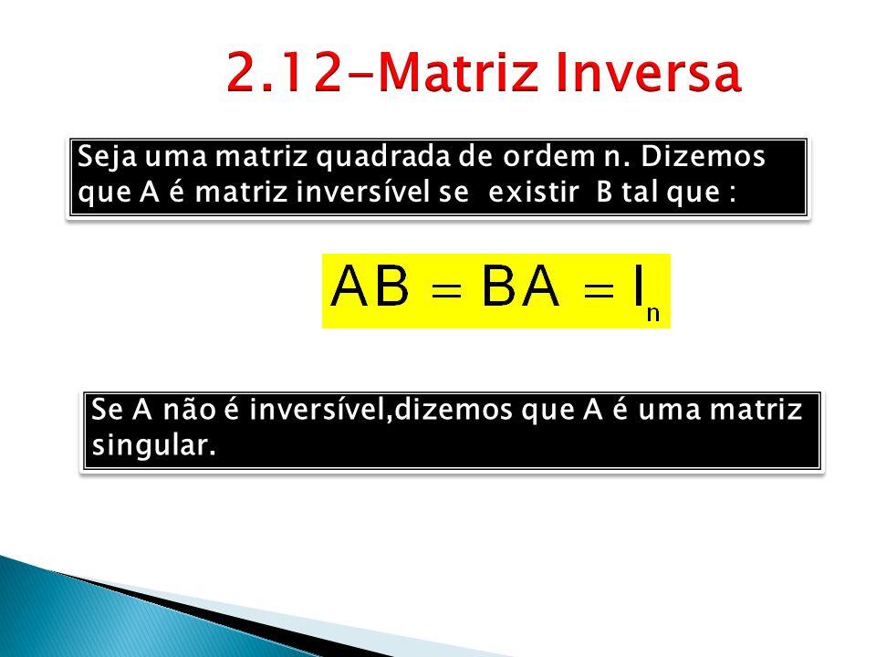 Seja uma matriz quadrada de ordem n. Dizemos que A é matriz inversível se existir B tal que : Se A não é inversível,dizemos que A é uma matriz singula