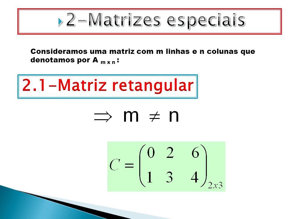 Consideramos uma matriz com m linhas e n colunas que denotamos por A m x n :