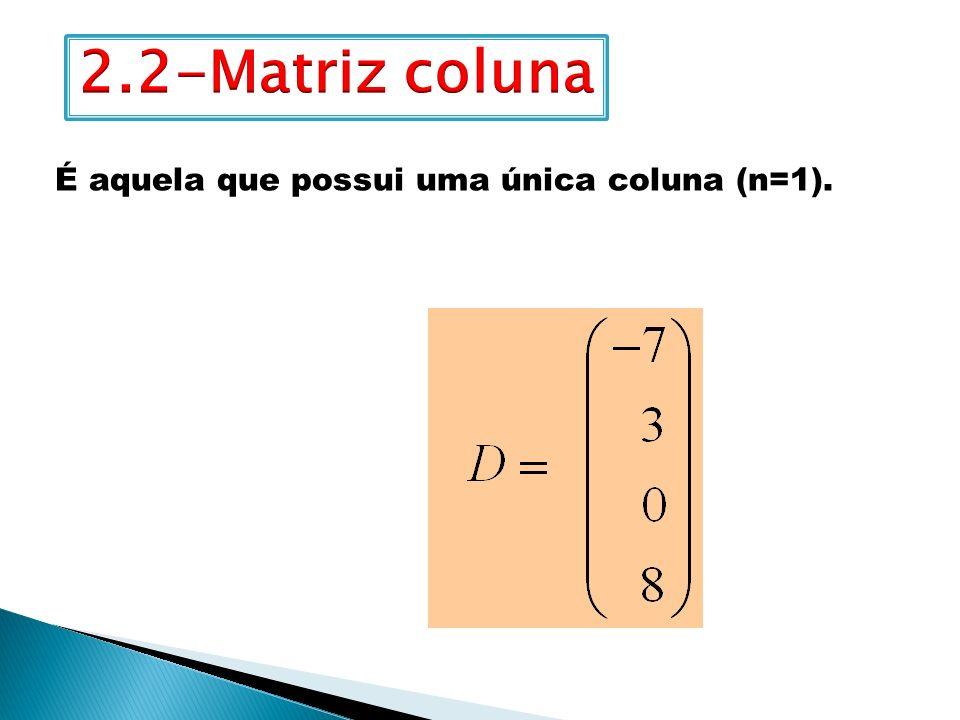 É aquela que possui uma única coluna (n=1).