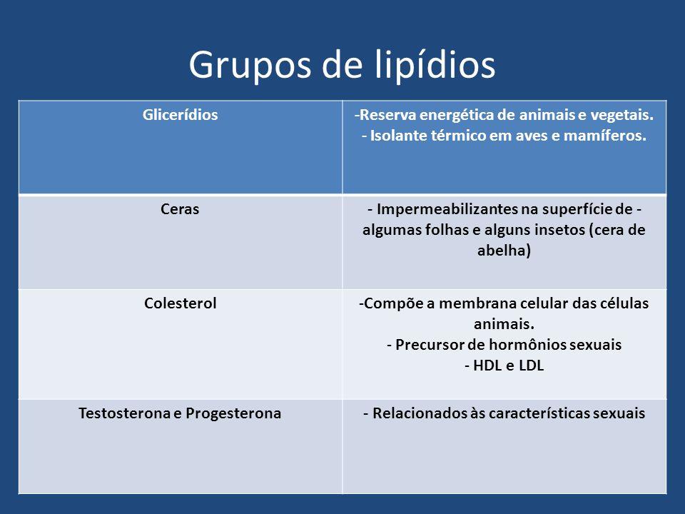 Grupos de lipídios Glicerídios-Reserva energética de animais e vegetais. - Isolante térmico em aves e mamíferos. Ceras- Impermeabilizantes na superfíc