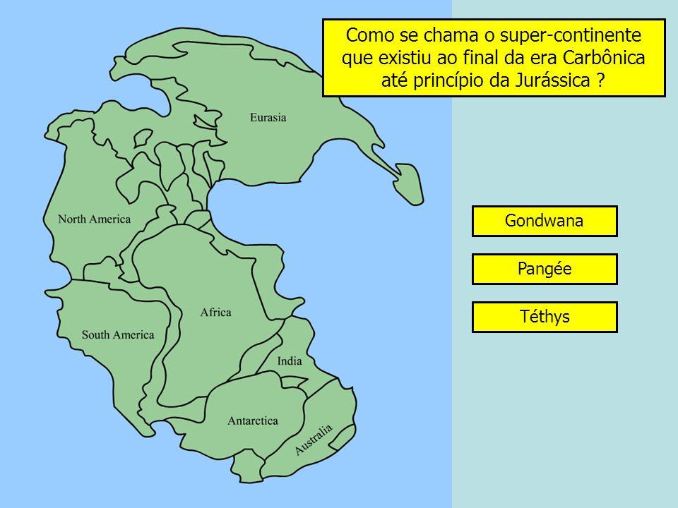 Como se chama a parte do litoral descoberta na maré baixa ? Costa arenosa baixa RefluxoPlatier