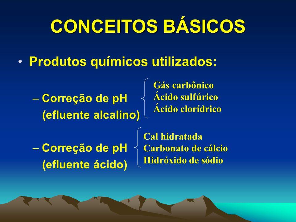 CONCEITOS BÁSICOS Produtos químicos utilizados: –Oxidantes –Redutores Cloro Peróxido Ozônio Bissulfito de sódio Dióxido de enxofre Metabissulfito de sódio