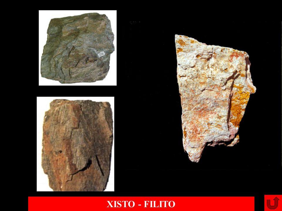 XISTO - FILITO