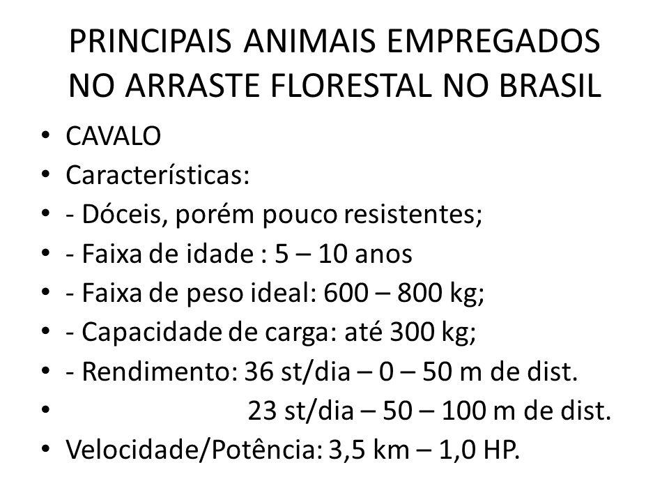 PRINCIPAIS ANIMAIS EMPREGADOS NO ARRASTE FLORESTAL NO BRASIL CAVALO Características: - Dóceis, porém pouco resistentes; - Faixa de idade : 5 – 10 anos
