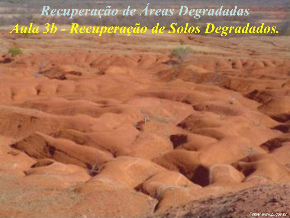 Recuperação de Áreas Degradadas Aula 3b - Recuperação de Solos Degradados. Fonte: www.pi.gov.br