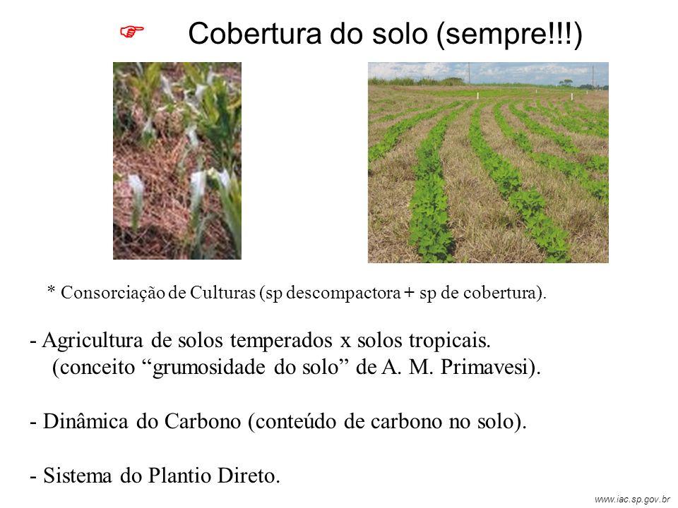 Cobertura do solo (sempre!!!) - Agricultura de solos temperados x solos tropicais. (conceito grumosidade do solo de A. M. Primavesi). - Dinâmica do Ca