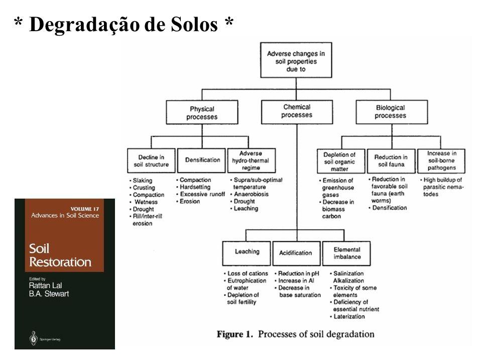Cobertura do solo (sempre!!!) - Agricultura de solos temperados x solos tropicais.