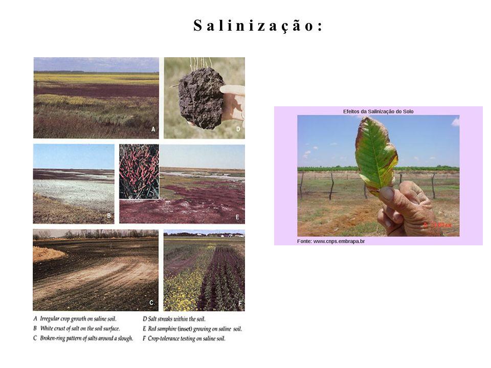 C o m p a c t a ç ã o : Fontes: http://www.falker.com.br; http://www.defesacivilcantagalo.rj.gov.br http://www.bc.cas.cz http://www.dpi.nsw.gov.au
