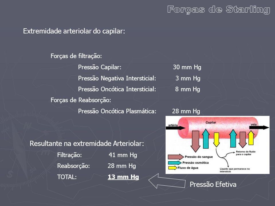 Extremidade arteriolar do capilar: Forças de filtração: Pressão Capilar: 30 mm Hg Pressão Negativa Intersticial: 3 mm Hg Pressão Oncótica Intersticial