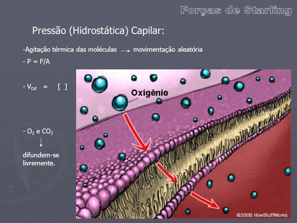Pressão (Hidrostática) Capilar: -Agitação térmica das moléculas movimentação aleatória - P = F/A - O 2 e CO 2 difundem-se livremente. - V Dif = [ ]