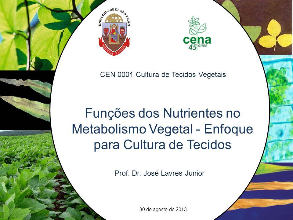 1.Introdução – Critérios de Essencialidade 2. Funções dos Nutrientes no Metabolismo 3.