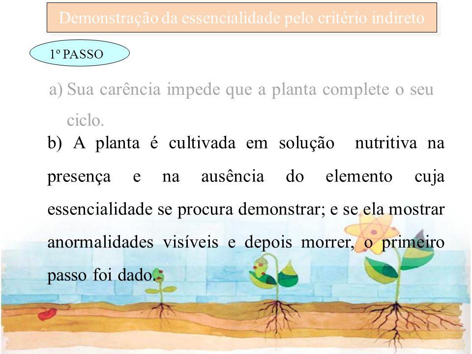 Demonstração da essencialidade pelo critério indireto 1º PASSO a)Sua carência impede que a planta complete o seu ciclo. b) A planta é cultivada em sol