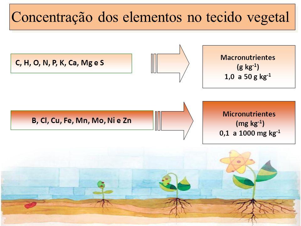 Concentração dos elementos no tecido vegetal C, H, O, N, P, K, Ca, Mg e S B, Cl, Cu, Fe, Mn, Mo, Ni e Zn Macronutrientes (g kg -1 ) 1,0 a 50 g kg -1 M