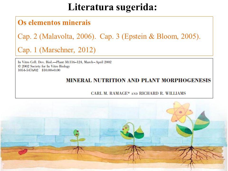 Os elementos minerais Cap. 2 (Malavolta, 2006). Cap. 3 (Epstein & Bloom, 2005). Cap. 1 (Marschner, 2012) Literatura sugerida: