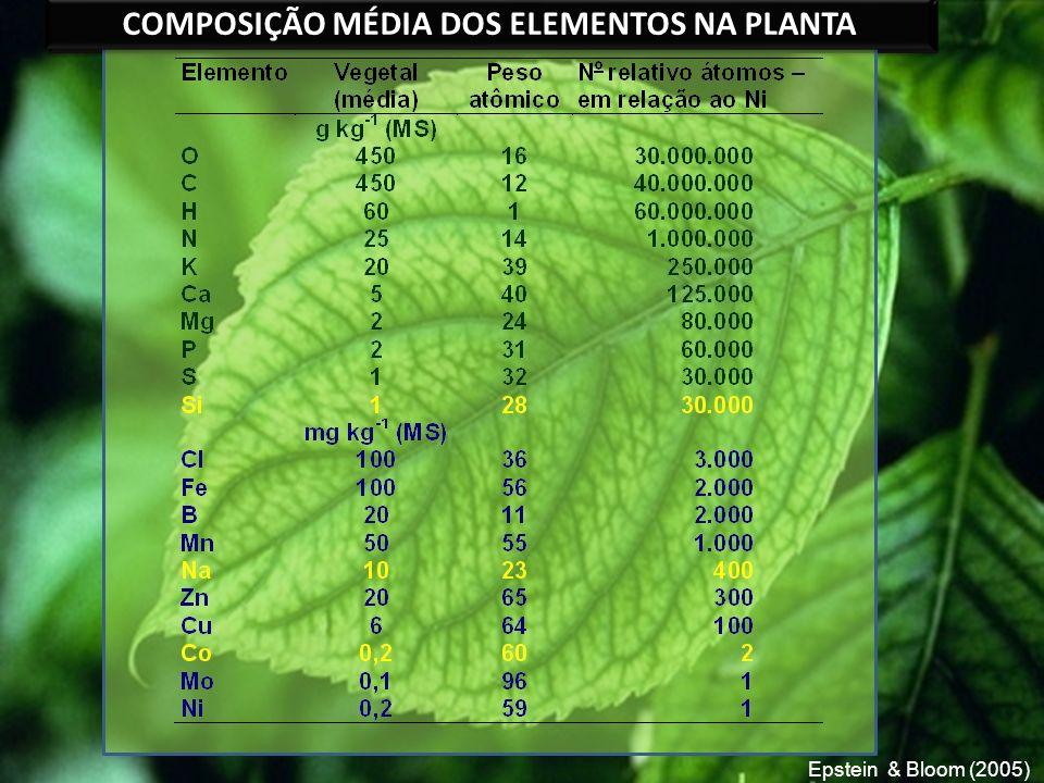 COMPOSIÇÃO MÉDIA DE ELEMENTOS NA PLANTA COMPOSIÇÃO MÉDIA DOS ELEMENTOS NA PLANTA Epstein & Bloom (2005)