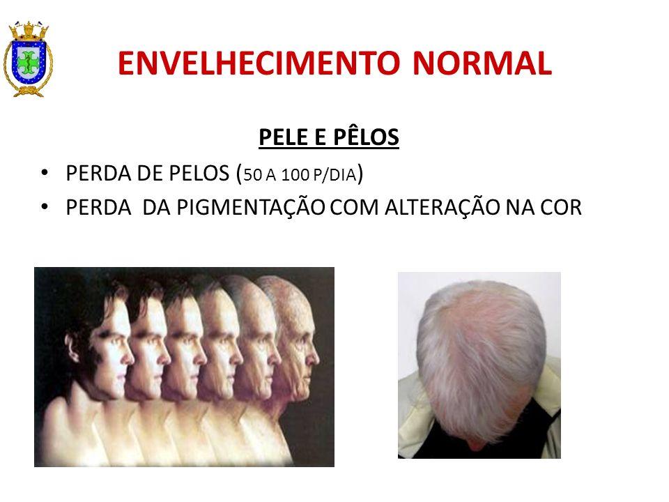 ENVELHECIMENTO NORMAL PELE E PÊLOS PERDA DE PELOS ( 50 A 100 P/DIA ) PERDA DA PIGMENTAÇÃO COM ALTERAÇÃO NA COR