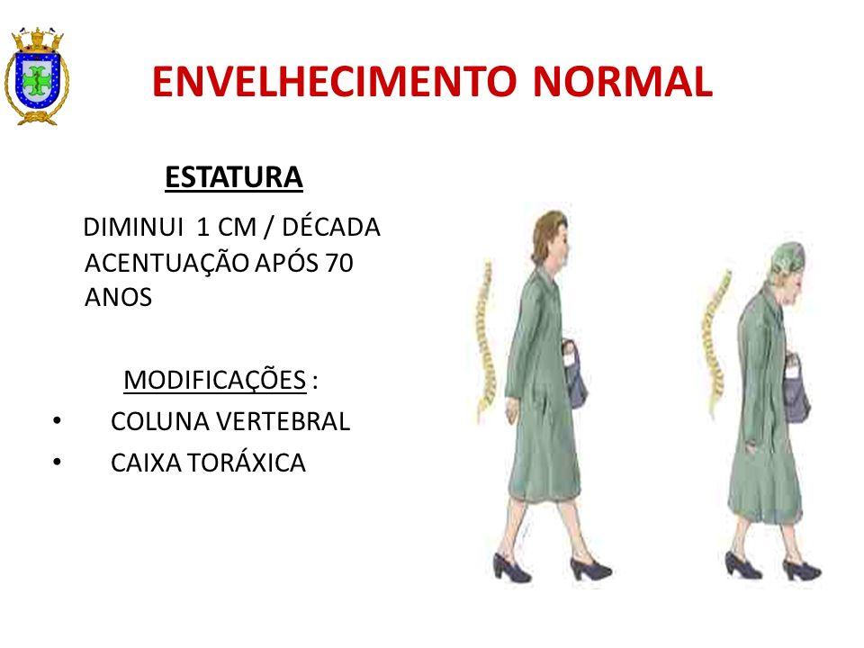 ENVELHECIMENTO NORMAL ESTATURA DIMINUI 1 CM / DÉCADA ACENTUAÇÃO APÓS 70 ANOS MODIFICAÇÕES : COLUNA VERTEBRAL CAIXA TORÁXICA