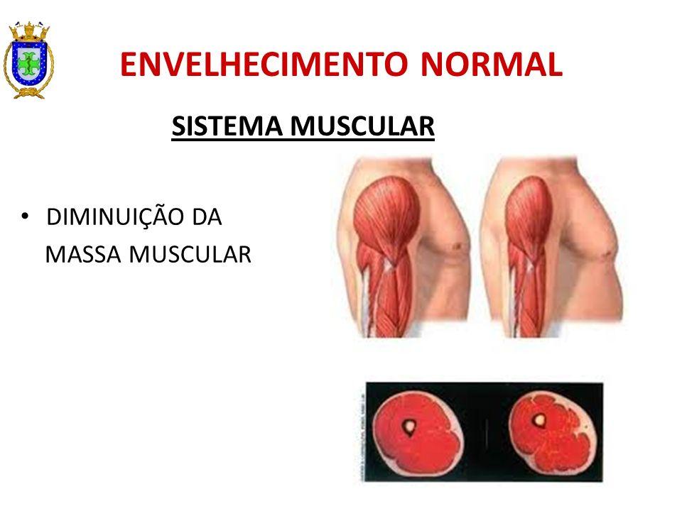 ENVELHECIMENTO NORMAL SISTEMA MUSCULAR DIMINUIÇÃO DA MASSA MUSCULAR