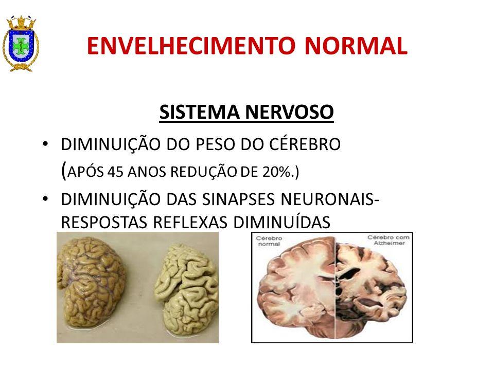 ENVELHECIMENTO NORMAL SISTEMA NERVOSO DIMINUIÇÃO DO PESO DO CÉREBRO ( APÓS 45 ANOS REDUÇÃO DE 20%.) DIMINUIÇÃO DAS SINAPSES NEURONAIS- RESPOSTAS REFLE