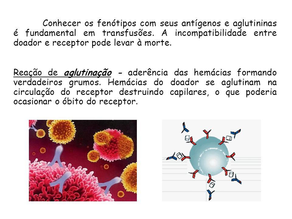 A HERANÇA DOS GRUPOS SANGUINEOS NA ESPÉCIE HUMANA Plasma ou soro: Rico em anticorpos (aglutininas) Sedimento com hemácias: contém os antígenos (aglutinogênios) Sangue centrifugado