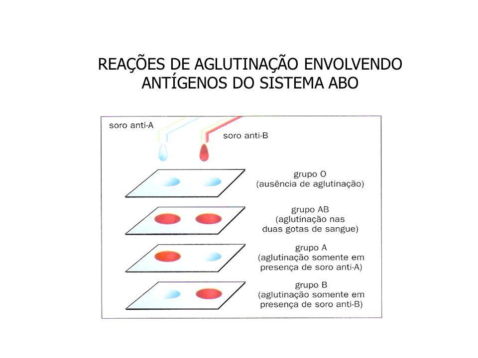 Transfusão no sistema ABO Grupo sanguíneo da pessoa Recebe deDoa para AA e OA e AB BB e OB e AB ABA,B, AB e OAB OOA,B, AB e O Grupo Sangüíneo Aglutinogênio (antígeno) nas hemácias Aglutinina (anticorpo) no plasma AAAnti-B BBAnti-A ABA e B- O-Anti-A e Anti-B