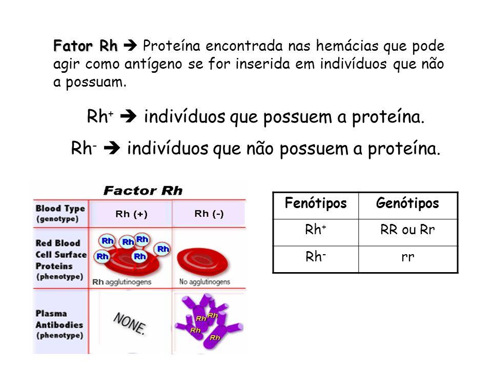 Genética do sistema Rh