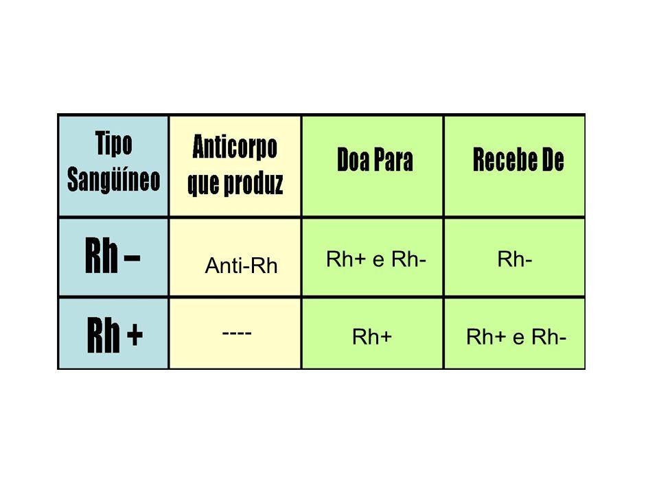 Observação importante: Os anticorpos anti-Rh não existem naturalmente no plasma das pessoas Rh negativas (Anticorpos imunes).