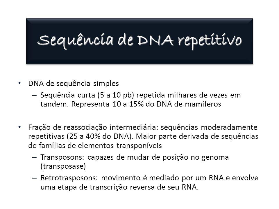 Sequência de DNA repetitivo DNA de sequência simples – Sequência curta (5 a 10 pb) repetida milhares de vezes em tandem. Representa 10 a 15% do DNA de