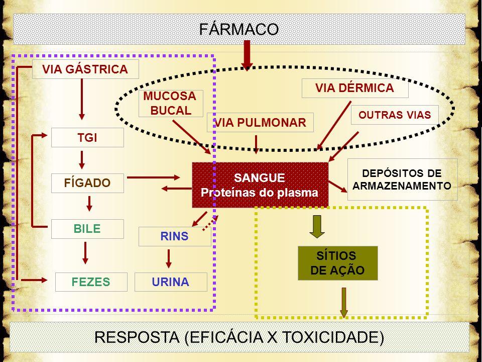 FÁRMACO SANGUE Proteínas do plasma RESPOSTA (EFICÁCIA X TOXICIDADE) VIA PULMONAR VIA DÉRMICA OUTRAS VIAS MUCOSA BUCAL VIA GÁSTRICA TGI BILE FÍGADO FEZ
