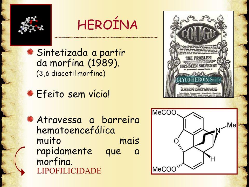 HEROÍNA Sintetizada a partir da morfina (1989). (3,6 diacetil morfina) Efeito sem vício! Atravessa a barreira hematoencefálica muito mais rapidamente