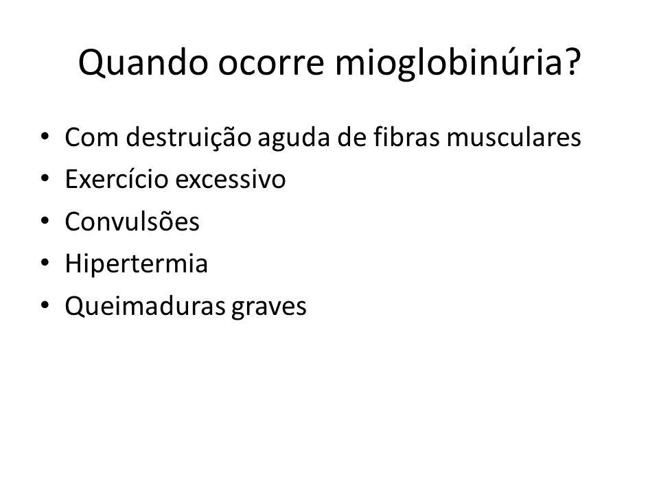 Quando ocorre mioglobinúria? Com destruição aguda de fibras musculares Exercício excessivo Convulsões Hipertermia Queimaduras graves