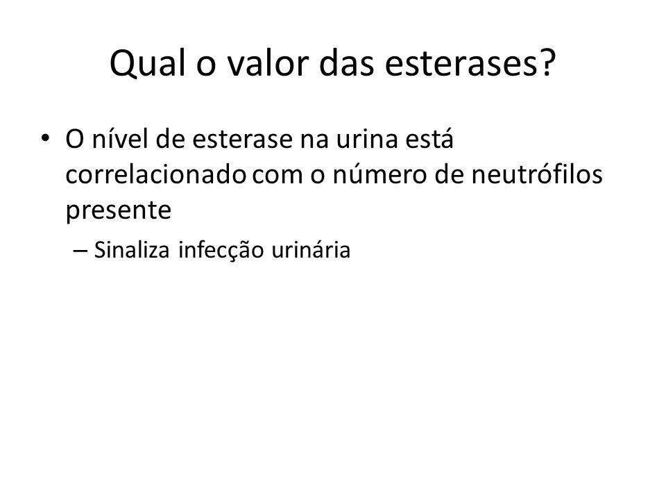 Qual o valor das esterases? O nível de esterase na urina está correlacionado com o número de neutrófilos presente – Sinaliza infecção urinária
