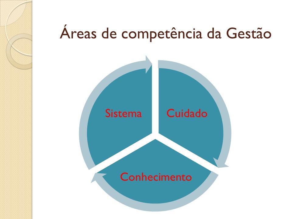 Áreas de competência da Gestão Cuidado Conhecimento Sistema