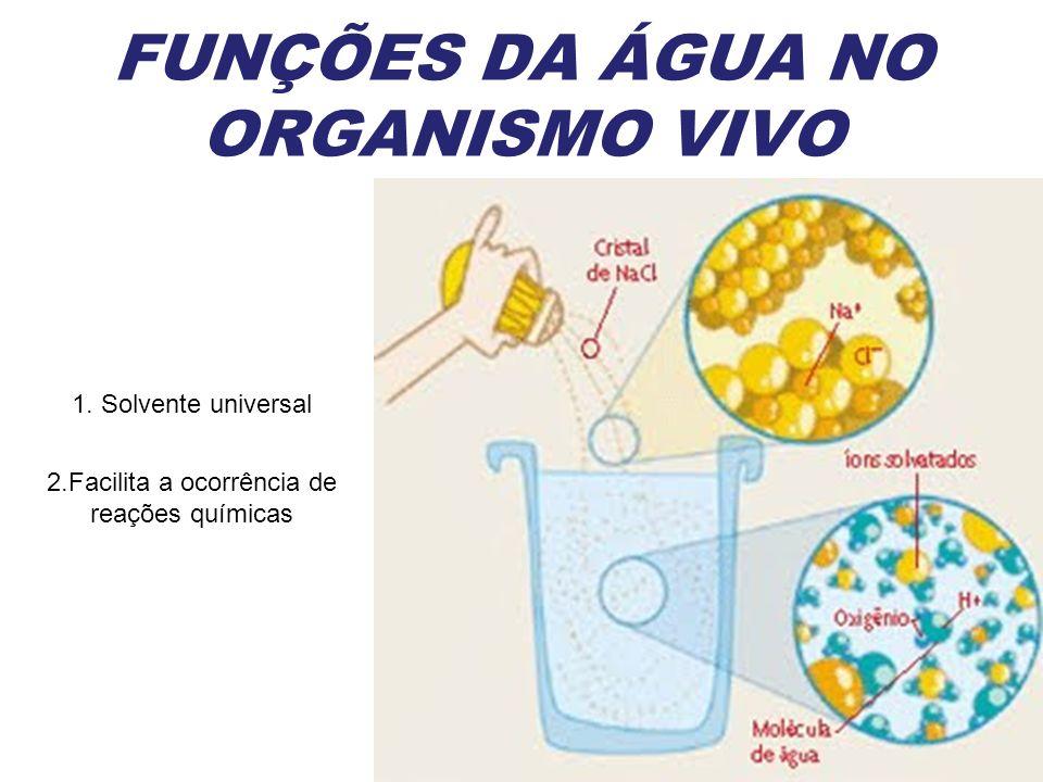 FUNÇÕES DA ÁGUA NO ORGANISMO VIVO 2.Facilita a ocorrência de reações químicas 1. Solvente universal
