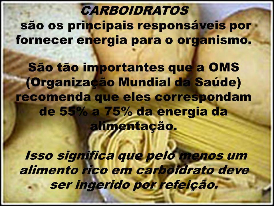CARBOIDRATOS são os principais responsáveis por fornecer energia para o organismo. São tão importantes que a OMS (Organização Mundial da Saúde) recome
