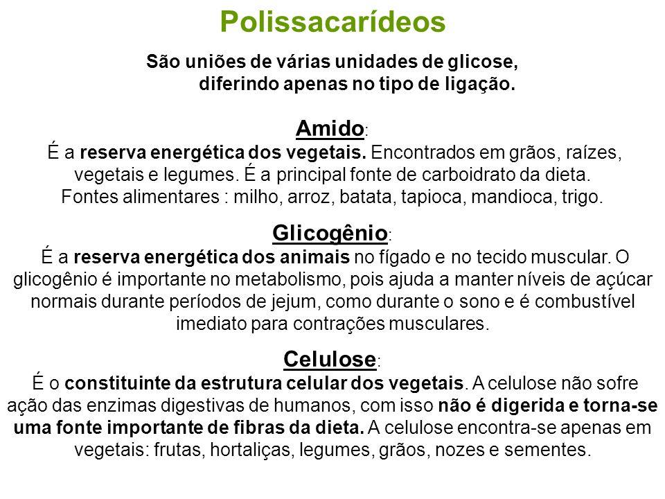Polissacarídeos São uniões de várias unidades de glicose, diferindo apenas no tipo de ligação. Amido : É a reserva energética dos vegetais. Encontrado