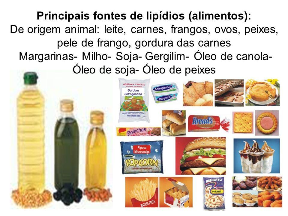Principais fontes de lipídios (alimentos): De origem animal: leite, carnes, frangos, ovos, peixes, pele de frango, gordura das carnes Margarinas- Milh