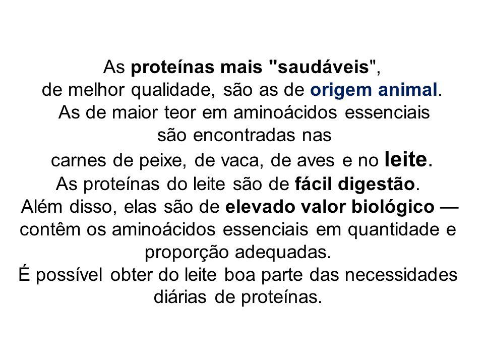 As proteínas mais